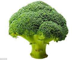 Healthsupplementproduct-Broccoli